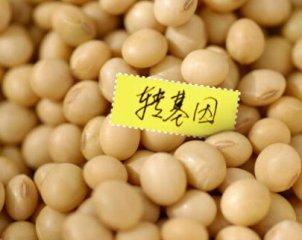 崔永元:我国转基因作物滥种问题已非常严重