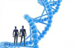 我国未批准任何转基因主粮商品化生产