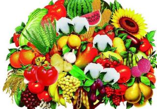 """专家解释""""转基因""""饮食与医药用途"""