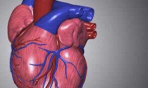 5个自检小动作查心脏疾病