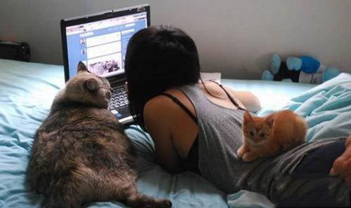 这身材猫咪都羡慕