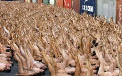 男女人体艺术倾情为你光裸展现