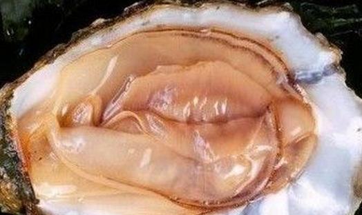 在煮河蚌之前,通常要對它進行清洗處理.圖片