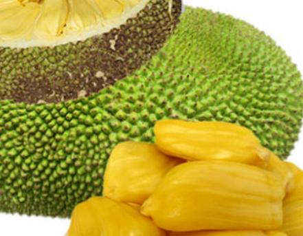 介绍哺乳期能吃菠萝蜜吗