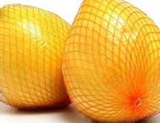柚子的功效   喝绿茶吃柚子治前列腺炎
