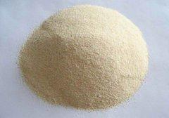 食用大蒜粉可以减肥吗