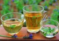 夏季女人喝什么茶最好呢