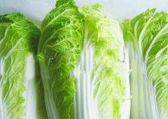 冬季多吃3种蔬菜补水防感冒