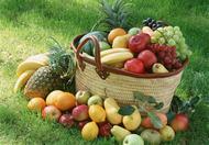 冬末春初吃什么好 7种水果正当季