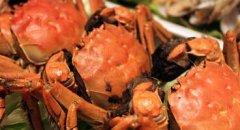 秋季吃螃蟹最佳!但要掌握正确的吃法