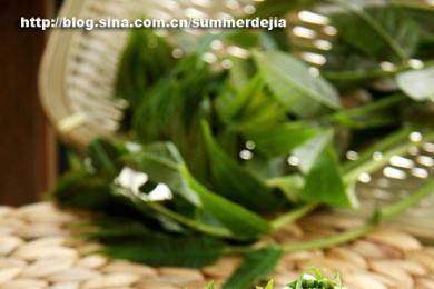 香椿拌豆腐4
