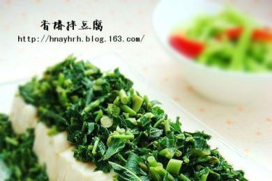 香椿拌豆腐1