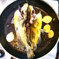 黄辣丁豆腐汤的做法
