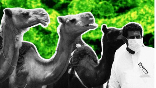 中东呼吸综合征百科