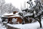 雪中院内小木屋