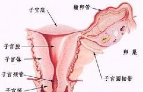 宫内节育器取出术