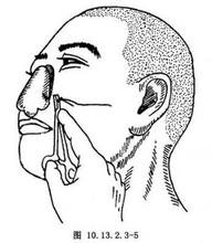 前臂游离皮瓣全鼻再造术