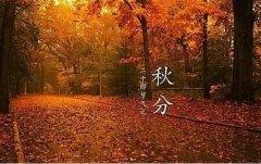 秋季腹泻高发 如何安度多事之秋?