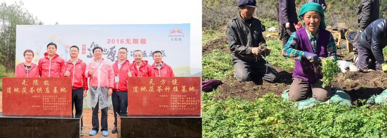筑舌尖上的安全防线  无限极连续14年获中国食品安全年会表彰