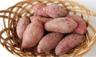 红薯发芽了还能吃吗?营养价值有什么变化