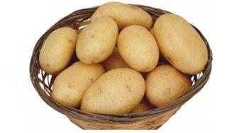 1岁小孩能吃土豆吗  发芽的土豆能吃吗