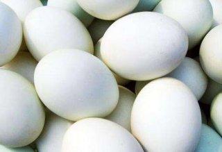7个月宝宝能不能吃鸭蛋,宝宝吃鸭蛋要注意哪些