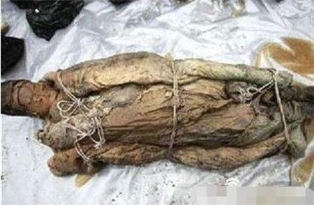关羽墓中的两具女尸究竟是谁?真相让人哭笑不得