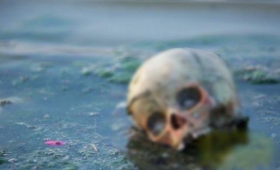 恐怖恶心的印度水葬:满河尸体被野狗肢解残吃