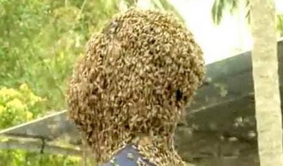 """逼死密集恐惧症! """"阿三哥""""头上布满6万只蜜蜂变蜂窝"""
