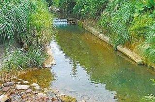 惊!私用河水是窃取台湾资源?载回家泡茶也是盗窃!