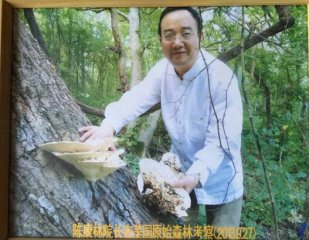 陈康林、中科野生药用真菌成为治癌新方向