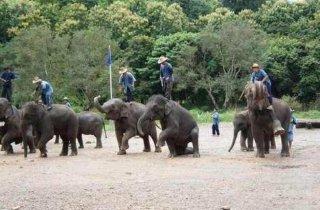 """为什么大家更喜欢去泰国玩而不是三亚?  真的因为""""人妖""""?"""