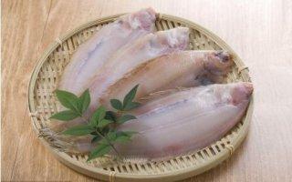比目鱼不处理能吃吗,怎么冰才更加新鲜?