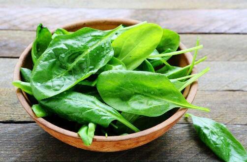 吃菠菜的好处和坏处都有哪些?