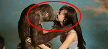 女子甘为猩猩守寡40年真相惊呆