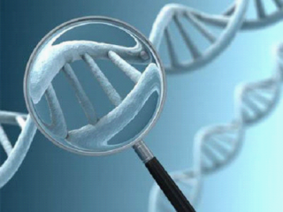 早期癌症的鉴定的新方法