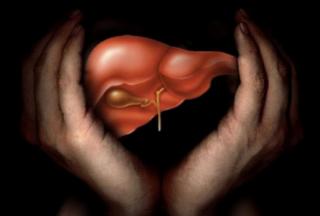 最新调查,青年男性可以通过BMI预测肝脏疾病