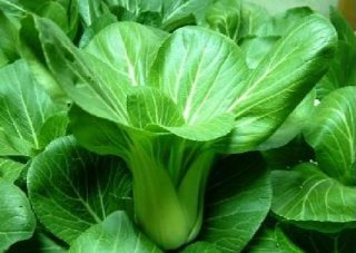 低血压吃什么青菜会加重低血压症状
