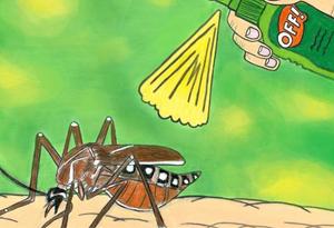 春节赴东南亚旅游需防蚊防疫
