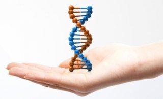 基因检测需要适当