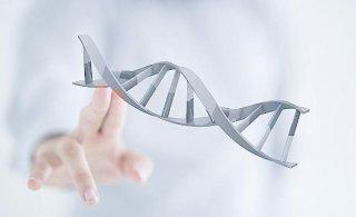 肠癌可能是基因错误
