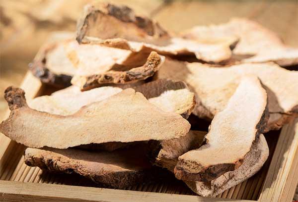 茯苓的功效及食疗方法有哪些?