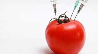 食品防腐剂会促进人肥胖