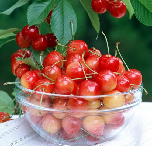 樱桃的好处有哪些