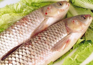 多吃草鱼有哪些好处?