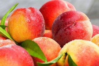 女性怀孕后期能吃桃子吗