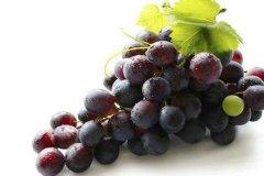 支气管炎可以吃什么水果