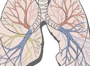 肺部可闻及干湿啰音及哮鸣音