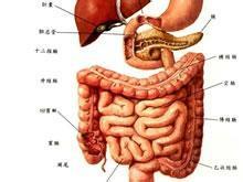 胃肠功能不良