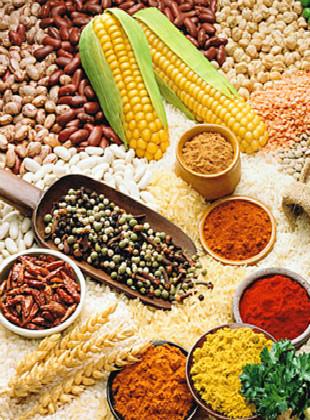 维生素D缺乏病的食疗有哪些